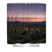 Southwest Serenity  Shower Curtain