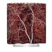 Southwest Texture Shower Curtain