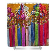 Souvenirs, China Shower Curtain