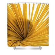 Spaghetti Spiral Shower Curtain
