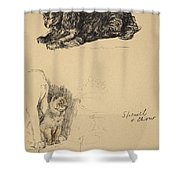 Spaniel And Chow, 1930, Illustrations Shower Curtain