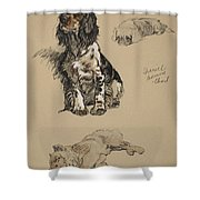 Spaniel, Pekinese And Chow, 1930 Shower Curtain