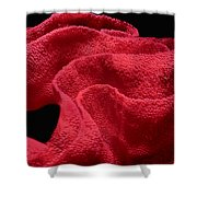Spanish Dancer Eggs 1 Shower Curtain