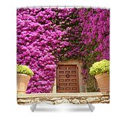 Spanish Door With Bougainvillea Shower Curtain
