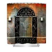 Spanish Influence Shower Curtain by Barbara Chichester