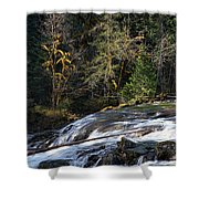 Spanish Moss And Falls Shower Curtain