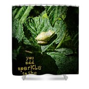 Sparkle Frog Shower Curtain
