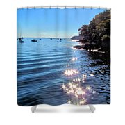 Sparkles And Twinkles Shower Curtain