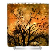 Sparkling Stars Light The Sky Shower Curtain