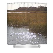 Sparkling  Marsh Shower Curtain