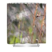 Sparkling Morning Sunshine With Dragonfly Shower Curtain