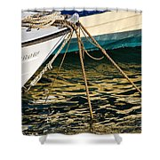 Sparrow At Lyme Regis Shower Curtain