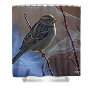 Sparrow In A Weave Shower Curtain