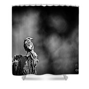 Sparrow In Black And White Shower Curtain