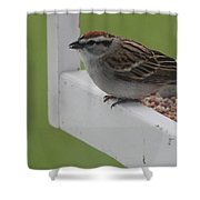 Sparrow On Feeder Shower Curtain