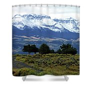 Speaking In Silence Shower Curtain