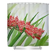 Spear Lily Shower Curtain