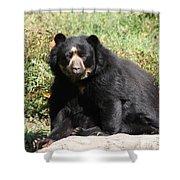 Speckled Bear Shower Curtain