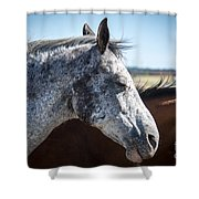 Speckled Gray Shower Curtain