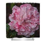 Speckled Rose Shower Curtain