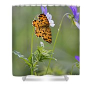 Speckled Yellow Moth On Pansy Wild Flower Shower Curtain