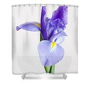 Spellbind Shower Curtain