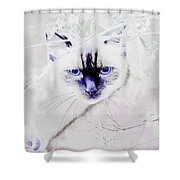 Spellbound Shower Curtain