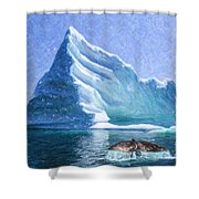 Sperm Whale Fluke In Front Of Iceberg Shower Curtain