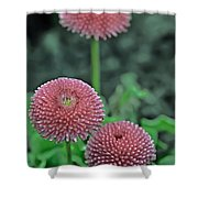 Sphere Of Pink Shower Curtain