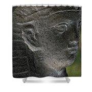 Sphinx Statue Head Grey Usa Shower Curtain