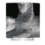 Sphinx Statue Three Quarter Profile Bw Glow Usa Shower Curtain