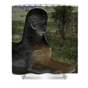 Sphinx Statue Three Quarter Profile Solar Usa Shower Curtain