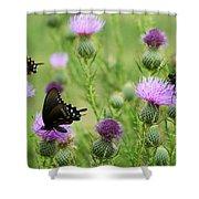 Spicebush Swallowtail Heaven Shower Curtain