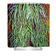 Spider Plant Shower Curtain