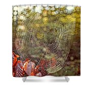 Spider Web Shower Curtain