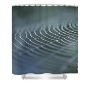 Spider Web With Dew Shower Curtain