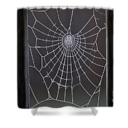 Spider Web With Frost Shower Curtain