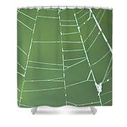 Spiderweb 3 Shower Curtain