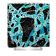 Spiderweb Turquoise Stone Painting 2 Shower Curtain