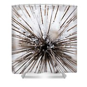 Spikes And Ice Shower Curtain