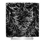 Spikes Of Nature Shower Curtain