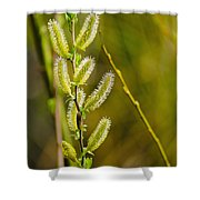 Spiky Green Plant Shower Curtain