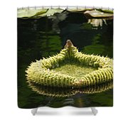 Spiky Lily Pad Shower Curtain