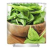 Spinach Shower Curtain by Elena Elisseeva