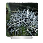 Spiney Bloom Shower Curtain