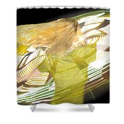Spinning By Jan Marvin Shower Curtain