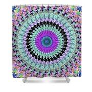 Spinning Colors Mandala Shower Curtain