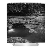 Spinning Leaves Bw Shower Curtain