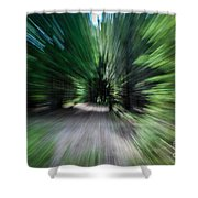 Spinning Through The Woods Shower Curtain