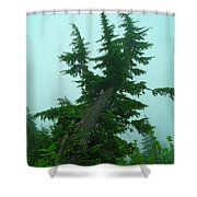 Spinning Up In A Twist Shower Curtain